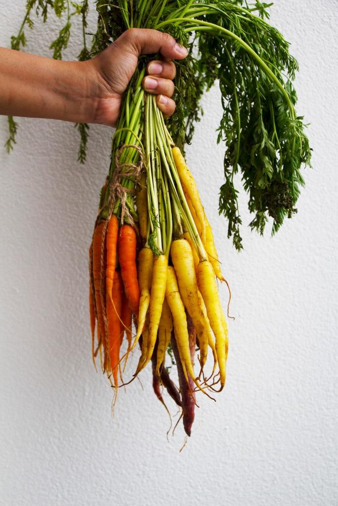 carrotbunch