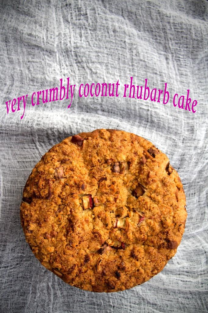 rhubarb crumble cake 06