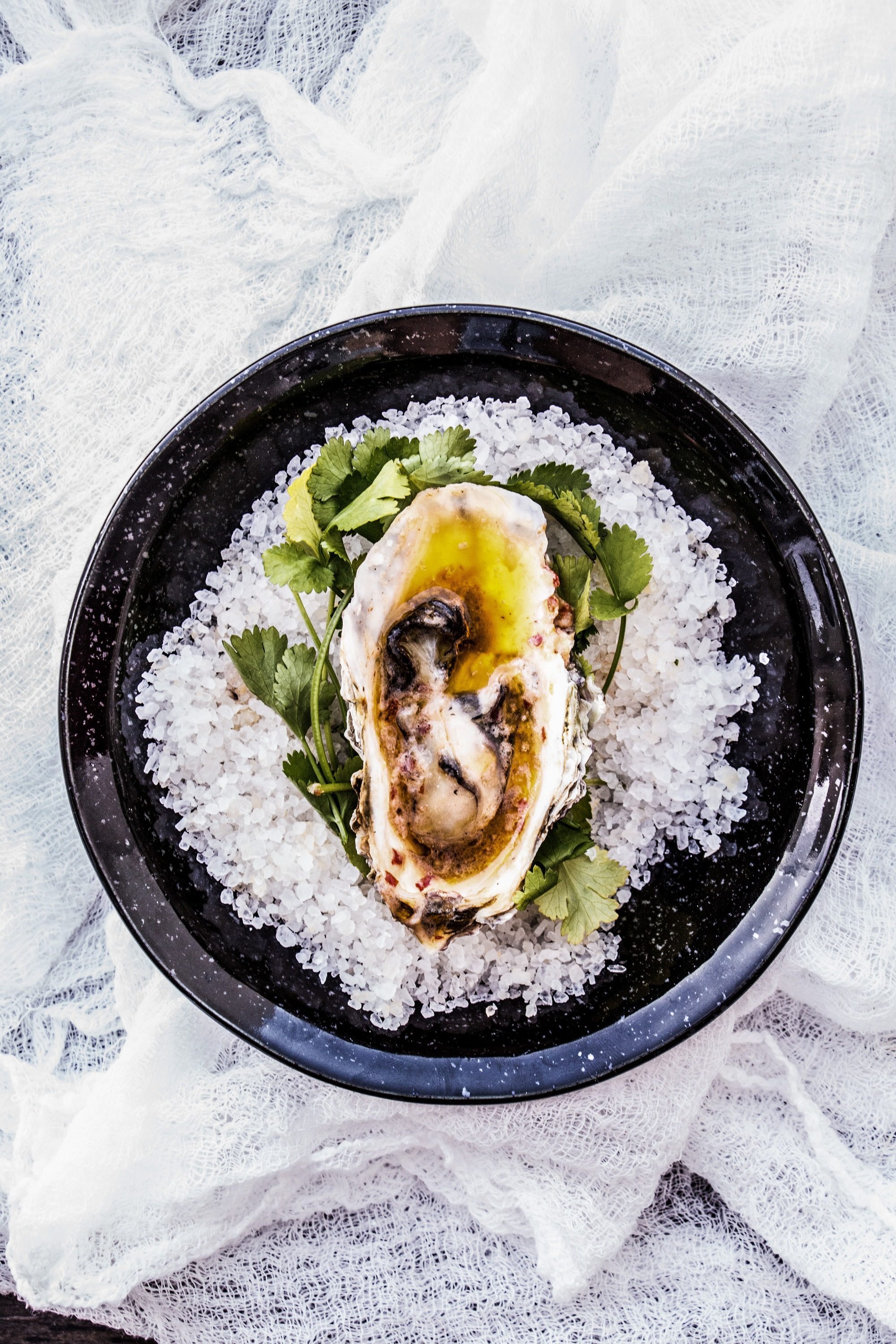 oysters04